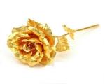 شاخه گل رز طلایی